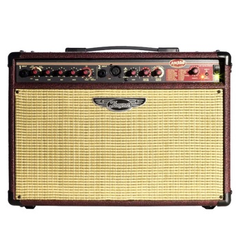 Traynor AM100T 100W Acoustic Guitar Combo Amp