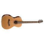 Seagull Coastline Series Grand Size Acoustic Guitar (29242)