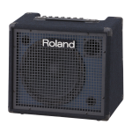 "ROLAND KC-200 100W 12"" Keyboard Amp"