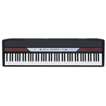 Korg SP250 88 weighted key dig piano